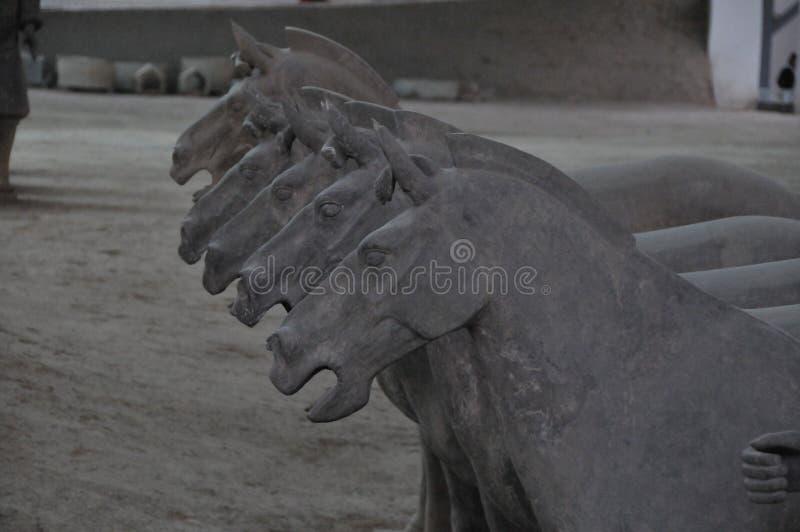 ` Xi cavalli di una terracotta fotografie stock libere da diritti