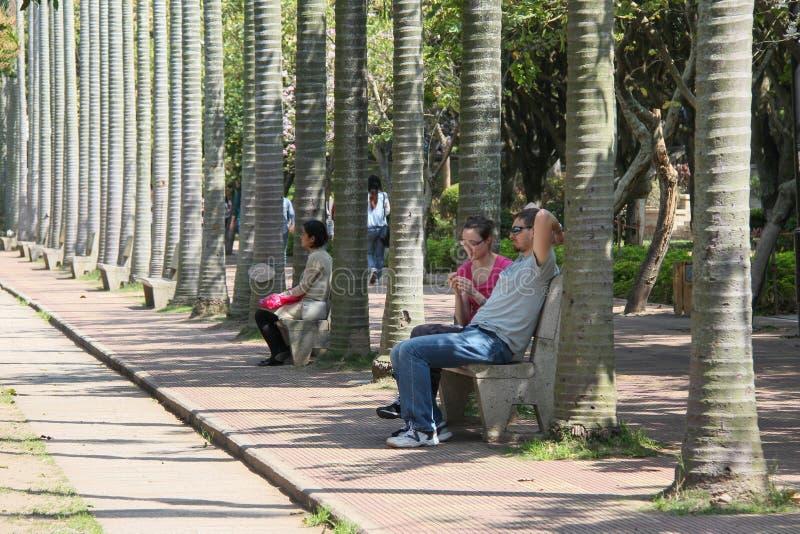 Xiamen kampus w południowo-wschodni Chiny fotografia stock
