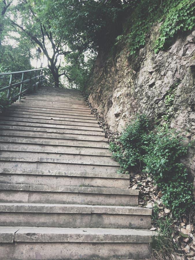 Xiaoshan Hangzhou Beigan berg arkivfoto
