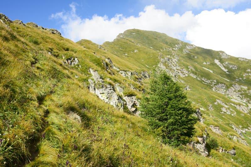 Download Xiaowutai Mountain scenery stock image. Image of escarpment - 15918979