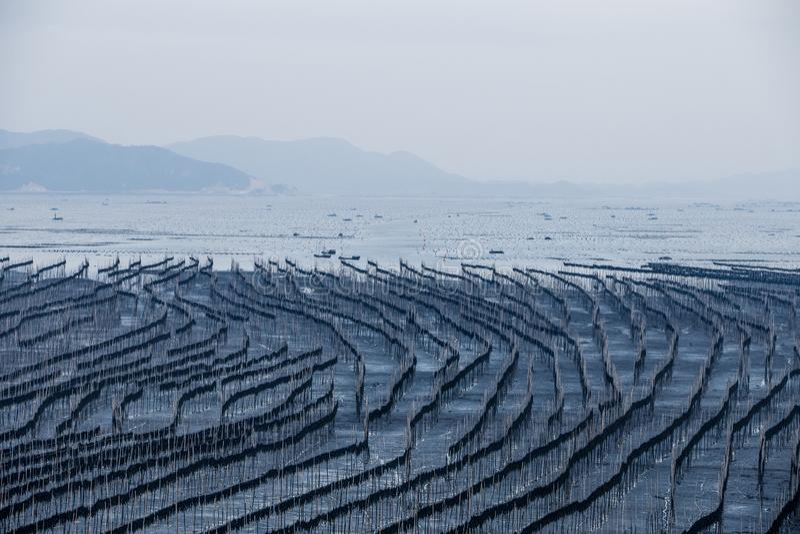 Xiapu, l'estran le plus bel de la Chine photo libre de droits