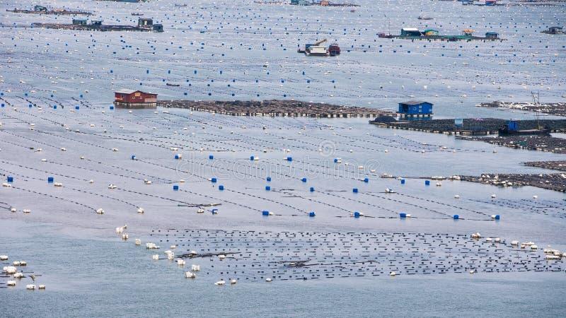 Xiapu, l'estran le plus bel de la Chine images stock