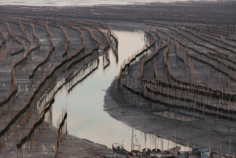 Xiapu, l'estran le plus bel de la Chine images libres de droits
