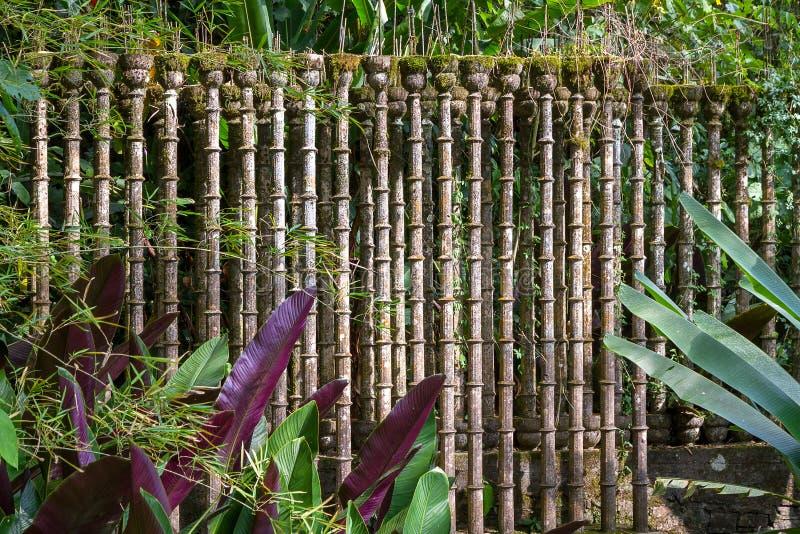 Xilitla - сад Эдварда Джеймс стоковые фото