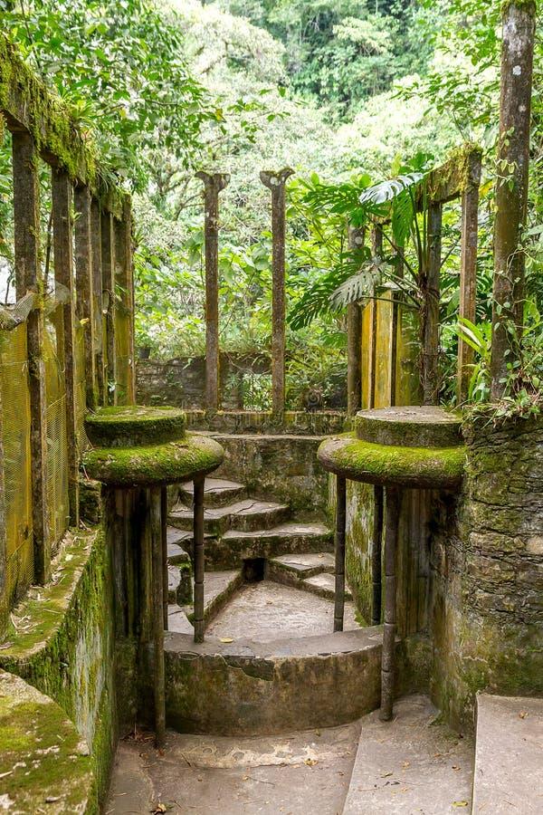 Xilitla - сад Эдварда Джеймс стоковое фото rf