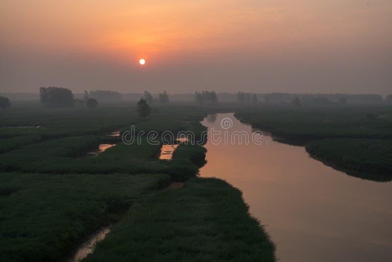 XINGHUA, КИТАЙ: Канал в поле рапса на утре стоковые фото