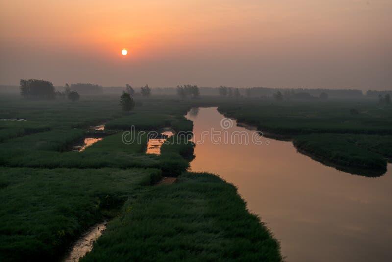 XINGHUA, КИТАЙ: Канал в поле рапса на утре стоковое фото rf