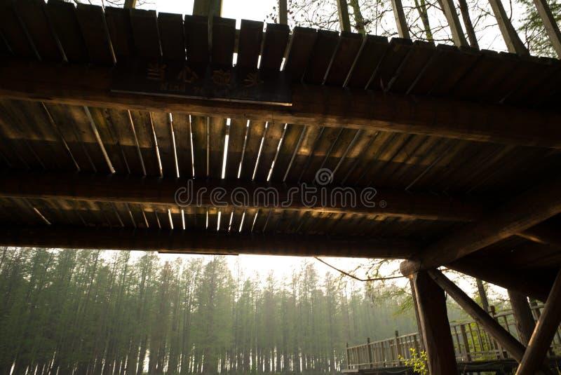 XINGHUA, CHINY: Kanał w rapeseed polu przy rankiem zdjęcia royalty free