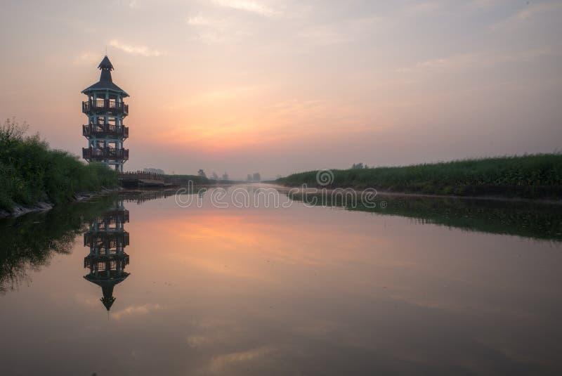 XINGHUA, CHINY: Kanał w rapeseed polu przy rankiem zdjęcie stock