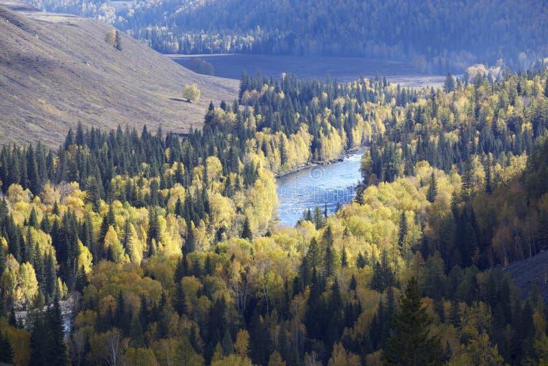 Xinjiang, China: rivier vallei royalty-vrije stock foto
