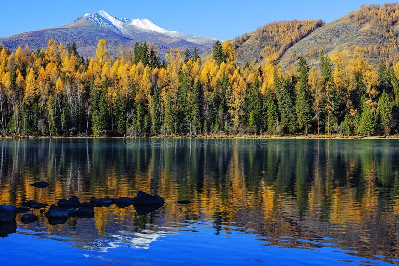 Xinjiang, die schöne Landschaft von kanas lizenzfreie stockfotos