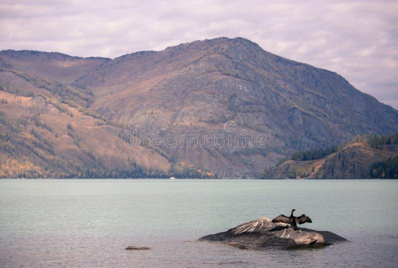 Xinjiang Kanas Lake scenery stock photography