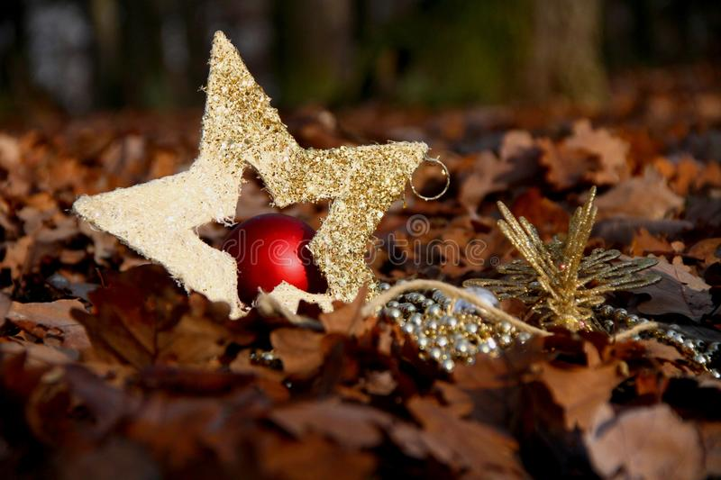 Download Xmas stock photo. Image of gold, forest, christmas, autumn - 27853574