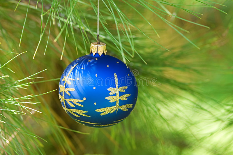 Xmas ball. Hanging in a pine tree stock photos