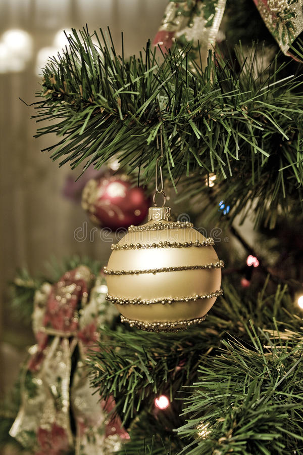 Download Xmas tree stock image. Image of colorful, pine, sparkle - 11819531