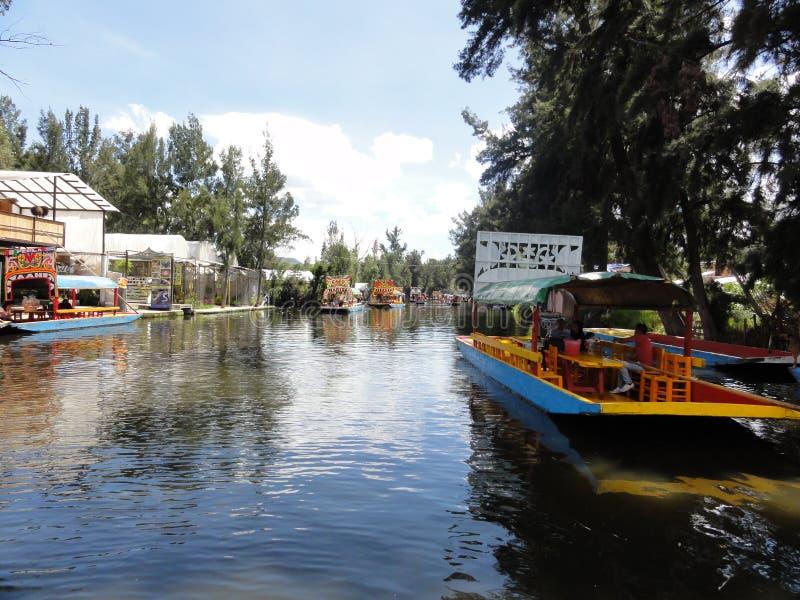Xochimilco - Ciudad de México - México fotos de stock royalty free
