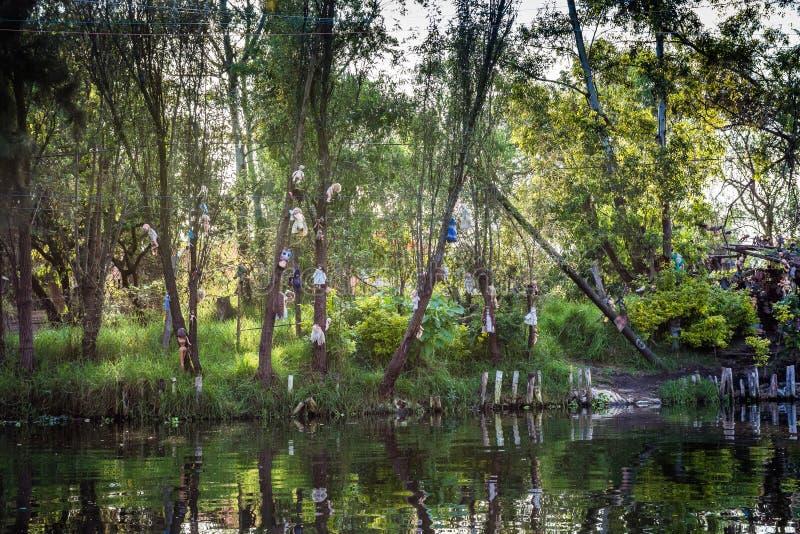 Xochimilco kanaler ? av dockor - Isla de las munecas arkivbild
