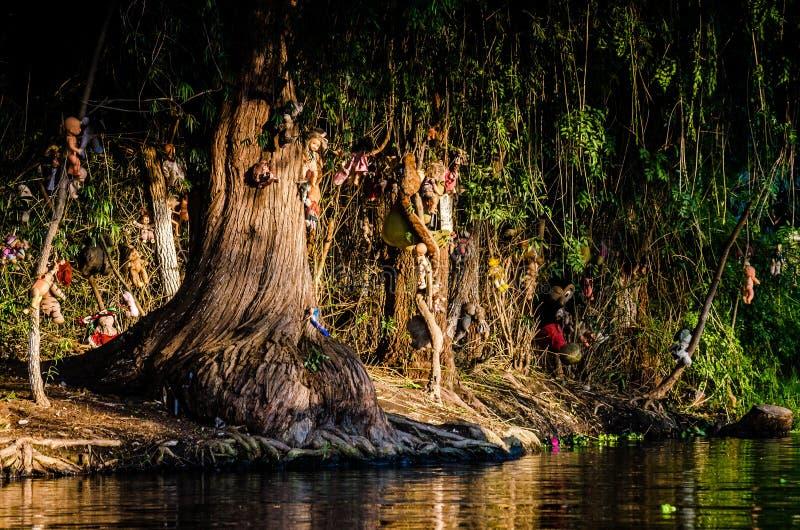 Xochimilco kanaler ? av dockor - Isla de las munecas royaltyfri foto