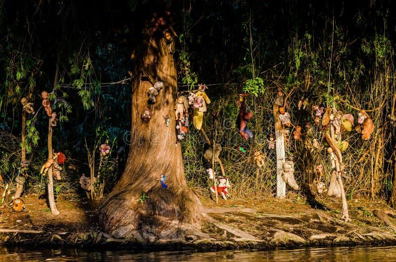 Xochimilco kanaler ? av dockor - Isla de las munecas royaltyfri bild