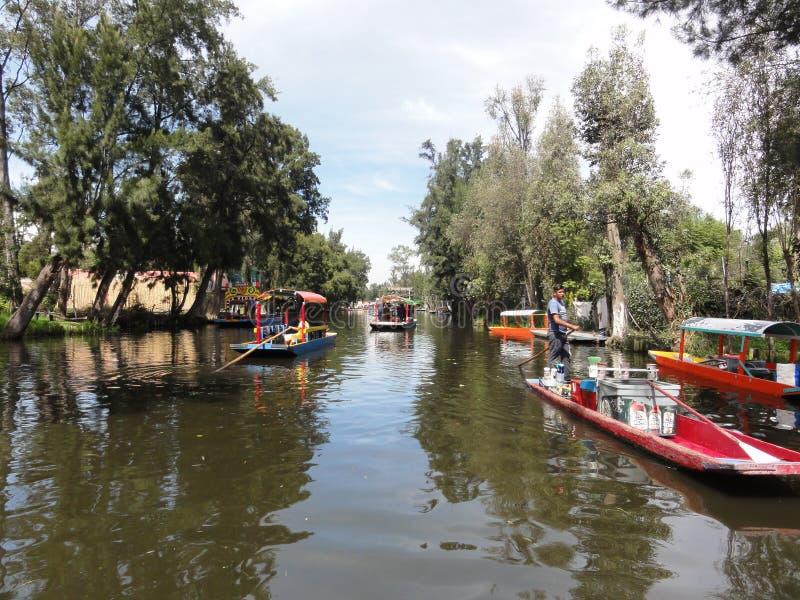 Xochimilco - Venise Mexicana - México fotografia de stock royalty free