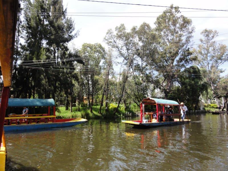 Xochimilco - Venise Mexicana - México fotografia de stock
