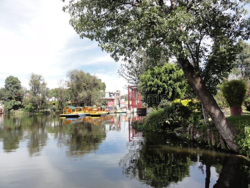 Xochimilco - Venise Mexicana - México imagem de stock royalty free
