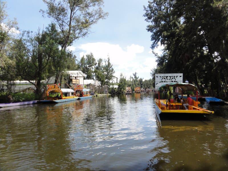Xochimilco - Venise Mexicana - México foto de stock