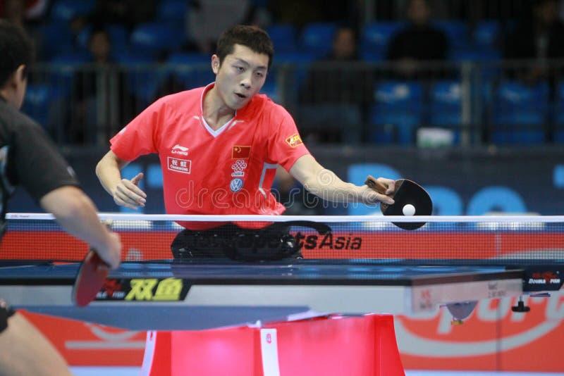 Xu Xin (CHN) fotografia de stock royalty free