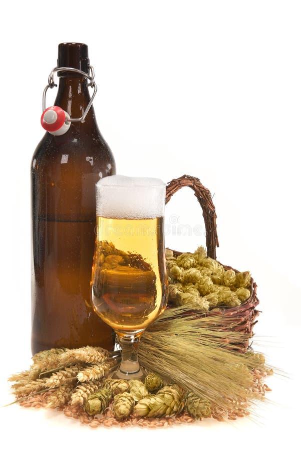 XXL-bierfles met bierglas stock foto
