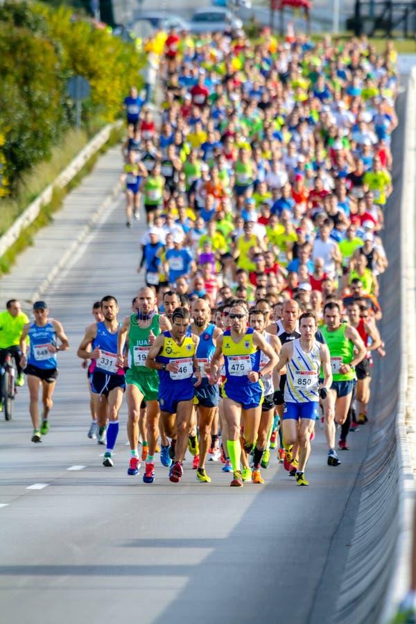 XXVIII halv maraton Bahia de Cadiz royaltyfria foton
