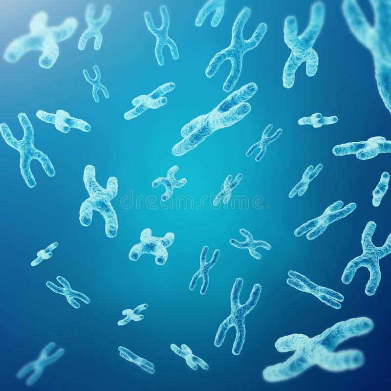 XY-cromosomas como concepto para la investigación médica de la genética de la terapia génica o de la microbiología del símbolo de libre illustration