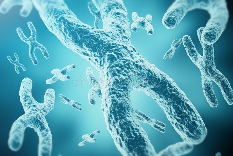 XY-cromossomas como um conceito para a pesquisa médica da genética da terapia genética ou da microbiologia do símbolo da biologia ilustração stock