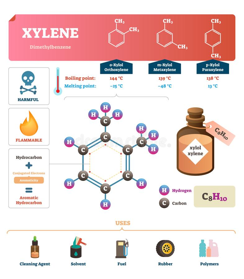 Xylene vector illustration. Labeled synthetic substance structure and uses. stock illustration