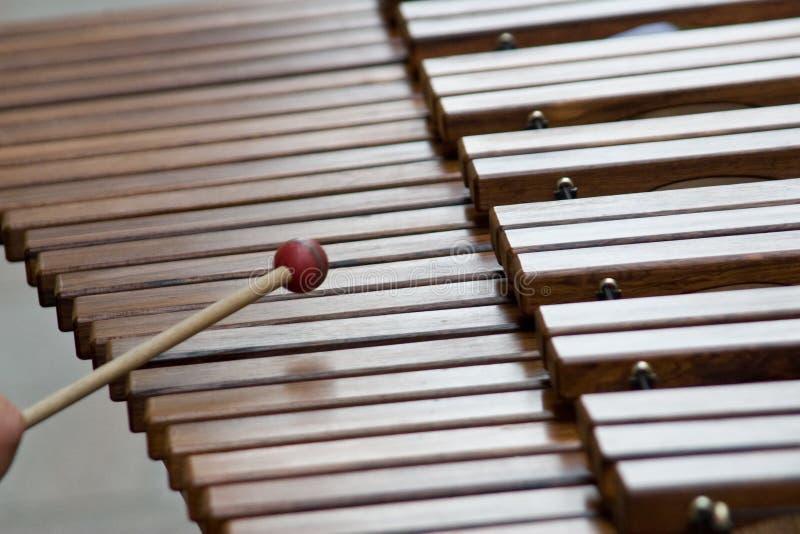 Xylophone, keys. A music instrument using wood sticks to produce warm sound stock photo