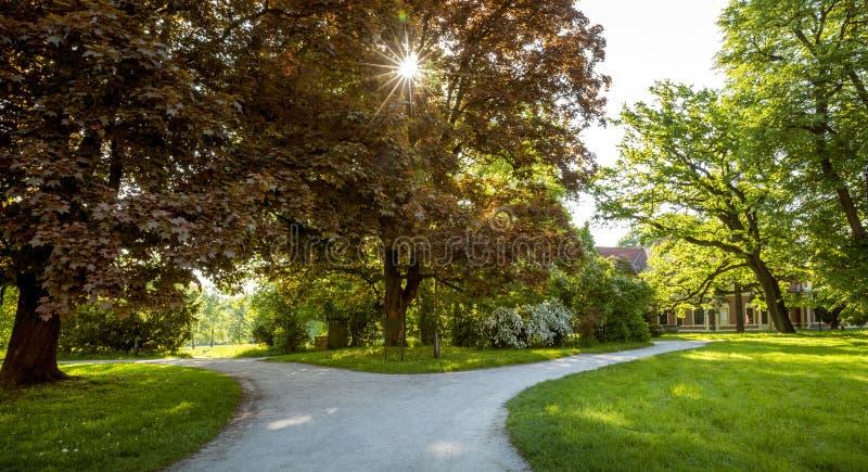 Download Y-empalme De Trayectorias En Parque Como Concepto Bien Escogido Foto de archivo - Imagen de concepto, footpath: 100528080
