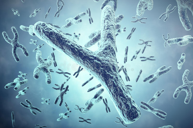 Y-kromosom i förgrunden, ett vetenskapligt begrepp illustration 3d royaltyfri illustrationer