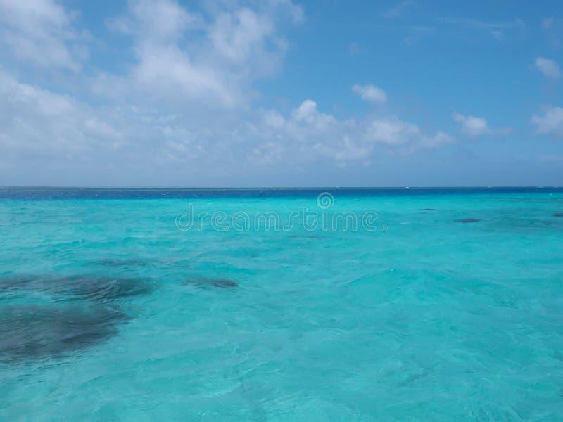Yabiji lub Yaebishi: duża rafa koralowa, lokalizować przy północą Ikema wyspa, w Japonia obrazy stock