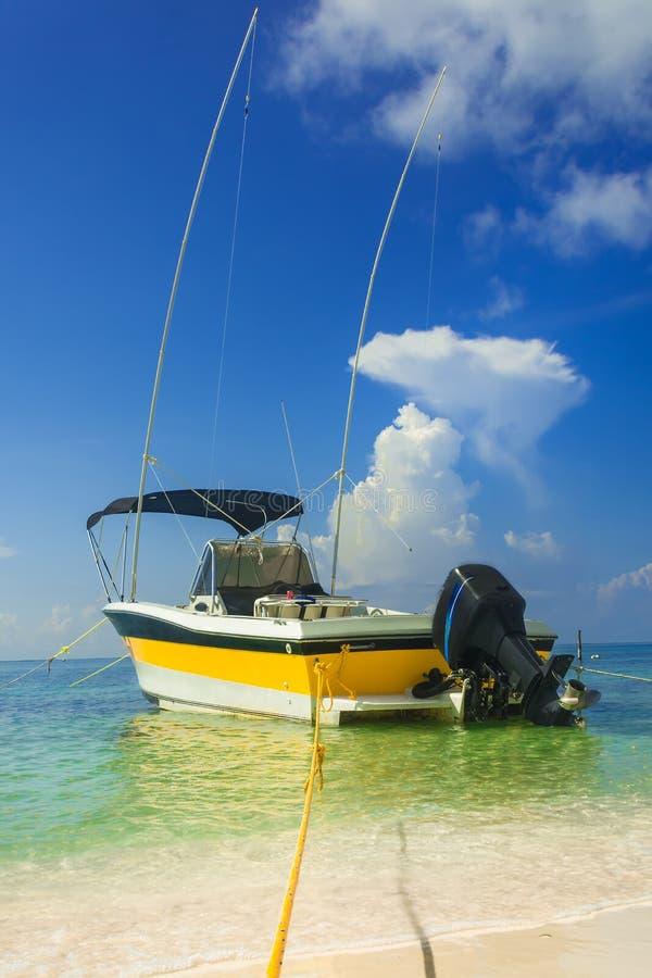 Download Yacht immagine stock. Immagine di piccolo, bello, marina - 117976401