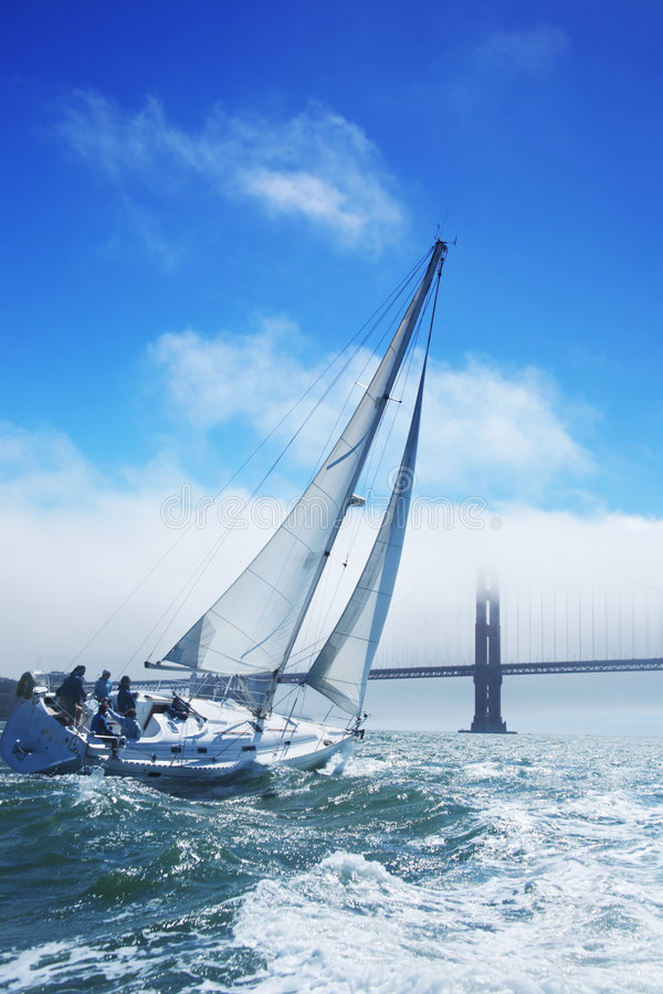 Download Yacht stock photo. Image of race, motion, sport, freedom - 7114930