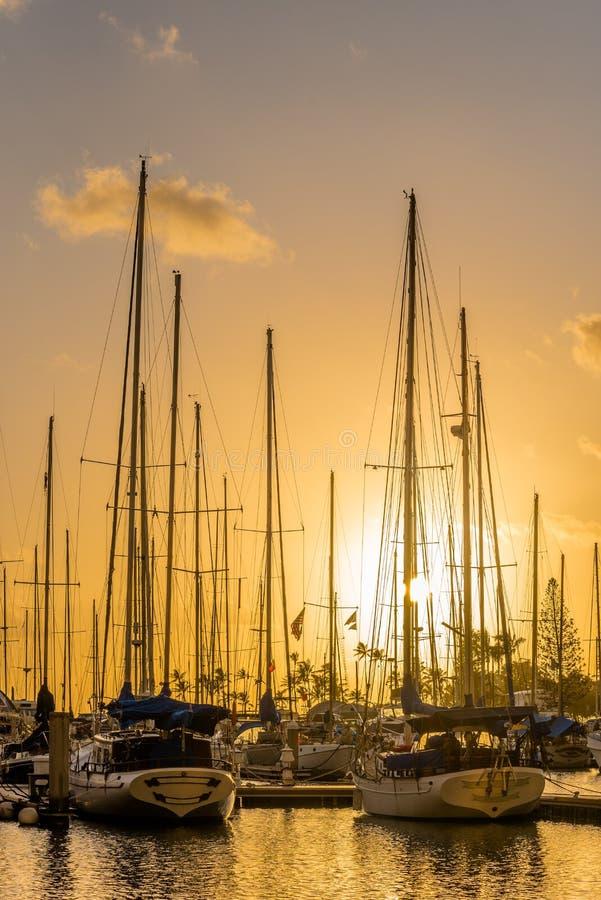 Yacht al tramonto all'ala Wai Small Boat Harbor a Honolulu, Hawai fotografia stock libera da diritti