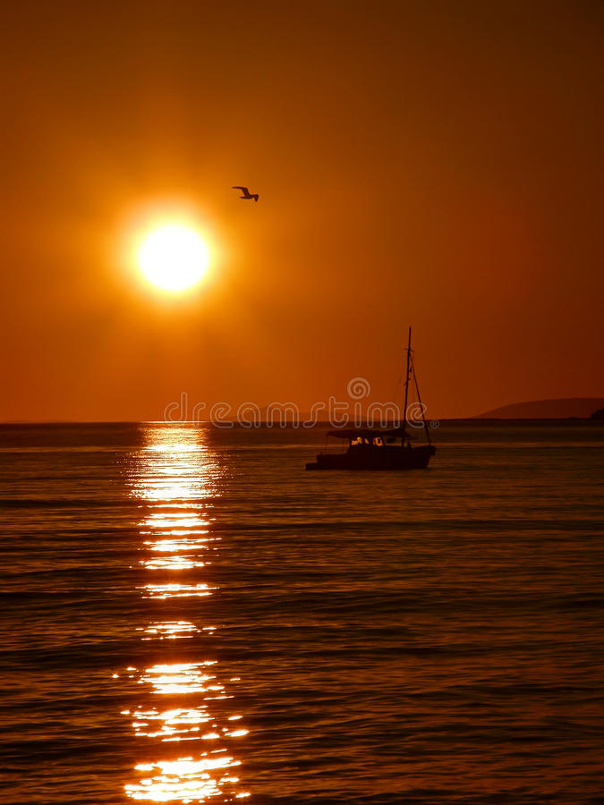 Yacht and bird at sunset stock image