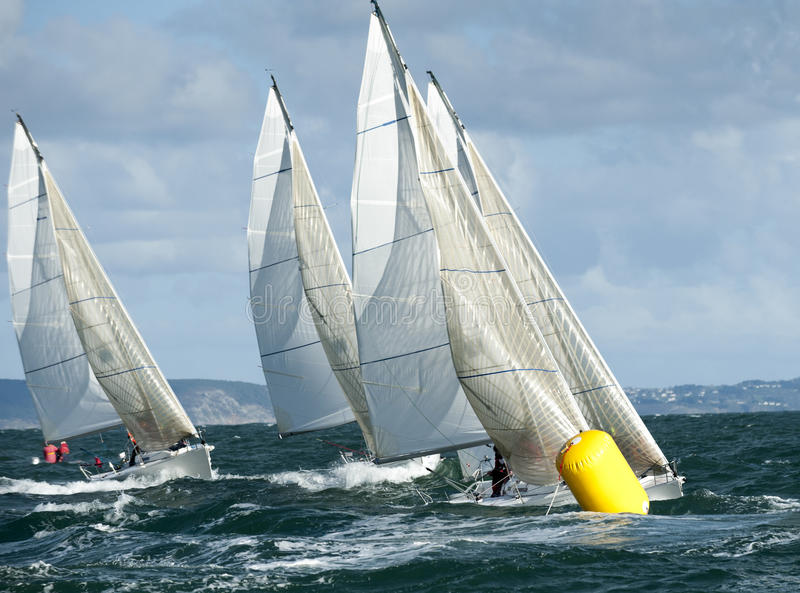 Yacht de flotte au regatta photo stock
