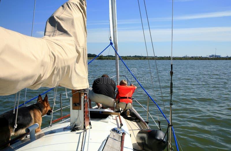 yacht för sommar för barnhundman royaltyfri fotografi