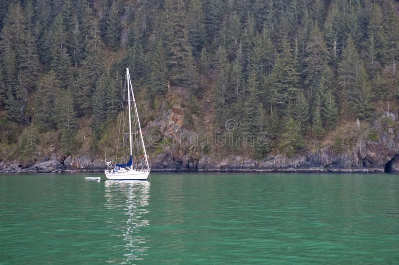 Download Yacht and forested coast stock image. Image of reflecting - 11512527