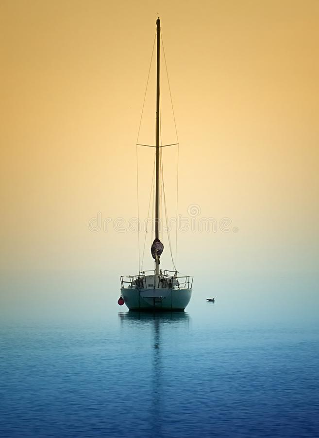 Yacht and gull in evening light royalty free stock photos