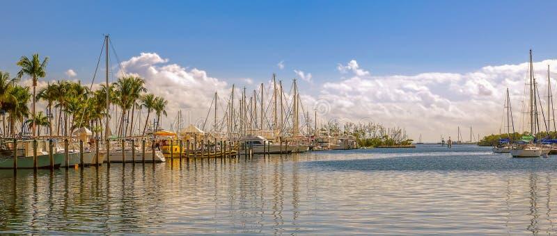 Yacht messi in bacino nel porto al giorno soleggiato Miami florida U.S.A. immagini stock libere da diritti