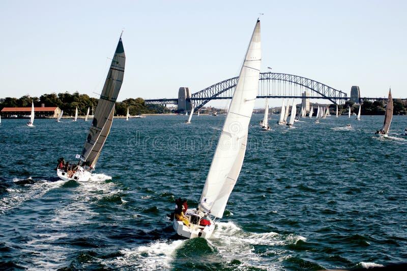 Yacht Regatta royalty free stock photography