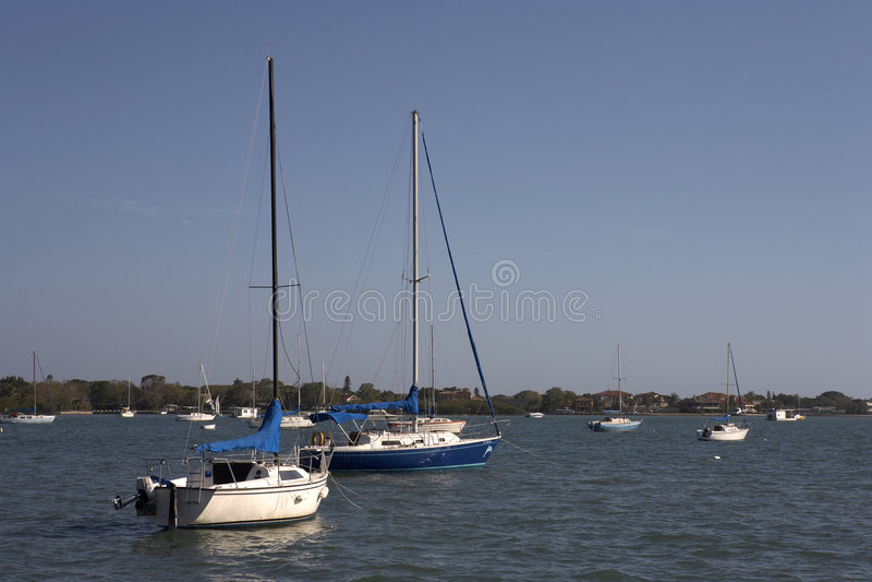 Yacht sul porto della baia di sarasota immagine stock libera da diritti