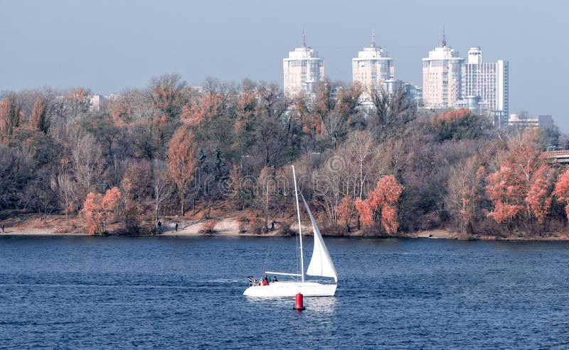 Yacht with a white sail on the background of the coast and the city stock image