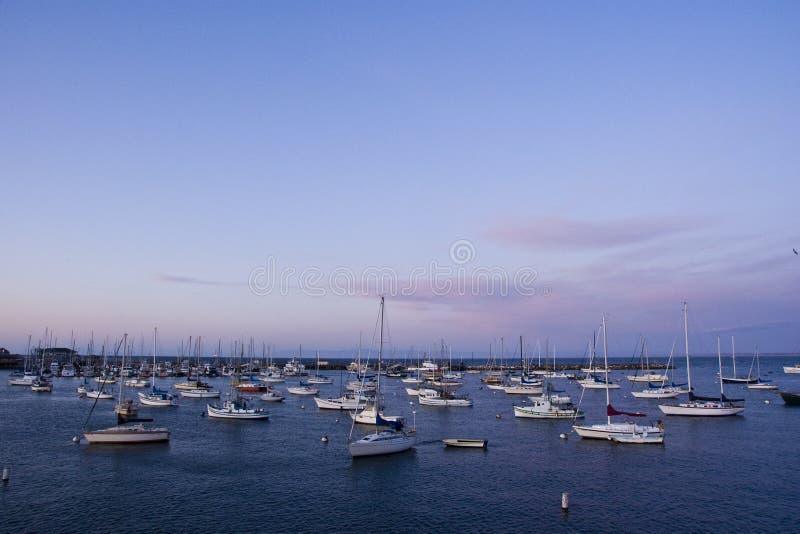 Yachten auf Monterey-Schacht lizenzfreies stockbild